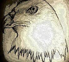 eagle-kartal by dilayilkdogan