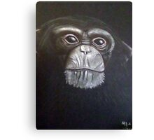 Chimp Pal Canvas Print