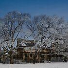 Winter day in Brookline by LudaNayvelt