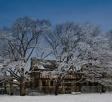 Winter day in Brookline by LudaNayvelt