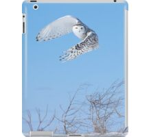 Into the wind iPad Case/Skin