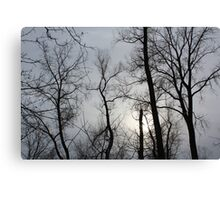 Cloudy Winter Day Canvas Print