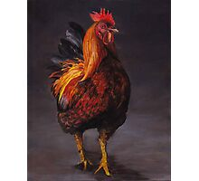 Rooster Strut Photographic Print