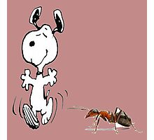 snoopy and ants Photographic Print