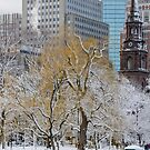 Winter in Boston Public Garden by LudaNayvelt
