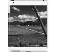 Japan from the bullet train iPad Case/Skin