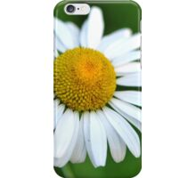 He Loves Me... He Loves Me Not!  iPhone Case/Skin