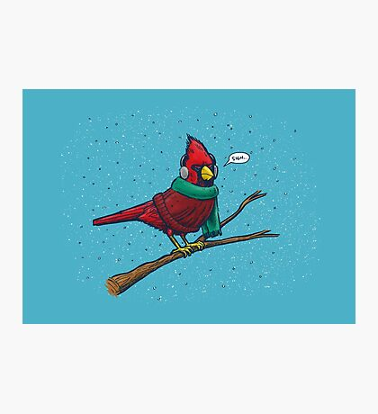 Annoyed IL Birds: The Cardinal Photographic Print