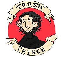 Trash Prince: Kylo Ren Photographic Print