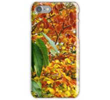 When Autumn Leaves Start To Fall iPhone Case/Skin