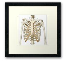 Skeleton Key T Framed Print