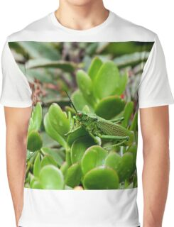 Kenya Grasshopper Graphic T-Shirt