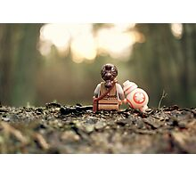 BB-FFs Photographic Print