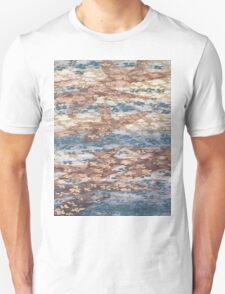 Carp Ed Pond T-Shirt