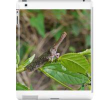 Lantern Bug in The Gambia iPad Case/Skin