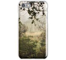 Umbagong district park (11) iPhone Case/Skin