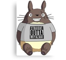 Totoro - Miyazaki Canvas Print