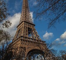 Eiffel in the park by Ron Finkel
