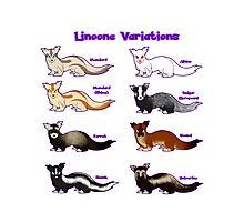 Pokemon Linoone Variations Photographic Print