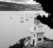 Akaroa, New Zealand. by VanOostrum