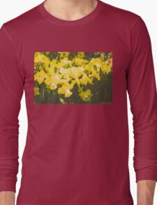 Impressions of Gardens - Golden Daffodil Blooms Long Sleeve T-Shirt