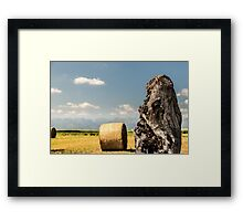 hay bale in the fields of italy Framed Print