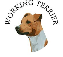 Working Terrier Photographic Print