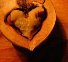 Heart in nutshell Sticker