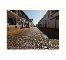 cobblestone - empedrado Art Print
