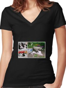Hollywood with kittens Women's Fitted V-Neck T-Shirt