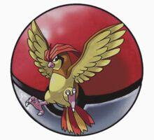 pidgeotto pokeball - pokemon by pokofu13