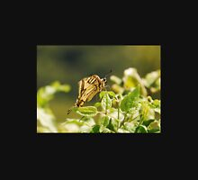 Southern Swallowtail Butterfly T-Shirt