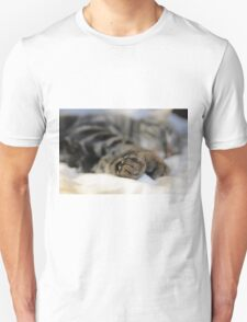 Another busy day T-Shirt