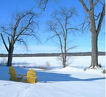 Winter Seating by the Shore Photographic Print