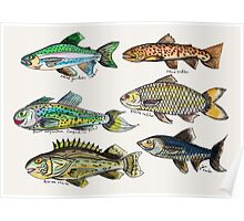 Pescus Imaginatum (Imagination Fish) Poster