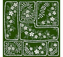 Green and white flowers Photographic Print