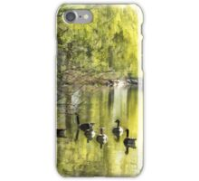 Geese by Willow iPhone Case/Skin
