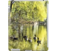Geese by Willow iPad Case/Skin