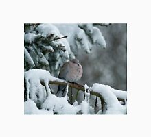 Collared Dove in Snow Unisex T-Shirt