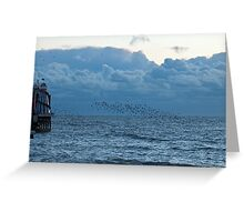 Starlings at Dusk Greeting Card