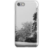 Snowy pine in Borås iPhone Case/Skin
