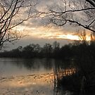 Winter Sunset Across Lake by Sue Robinson