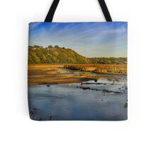 Newport Marshes Tote Bag