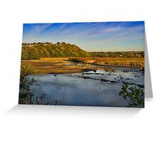 Newport Marshes Greeting Card