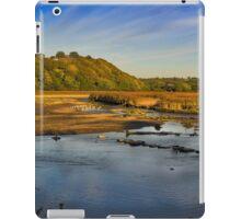 Newport Marshes iPad Case/Skin
