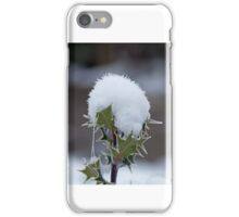 Holly Snow Cone iPhone Case/Skin