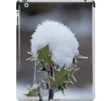 Holly Snow Cone iPad Case/Skin