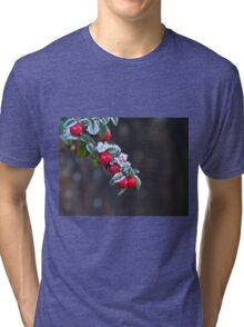 Red Berries With Frost Tri-blend T-Shirt