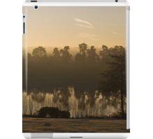 Dawn Mist at Forest Mere iPad Case/Skin