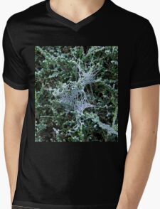 Cobweb with Frost Mens V-Neck T-Shirt